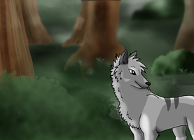 Kiba in the Woods by mirandooom
