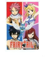 Fairy Tail main characters by Rhoda-the-Echidna