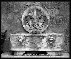 Fountain and Basin, Rome, 2009 by DaveR99