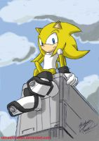 Spirit the hedgehog - Coloured by tamashii-chan