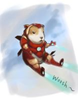 30 minute Challenge (Ironman+Guinea Pig) by WeijiC