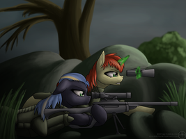 Sniper team [Fo:E] by Adalbertus