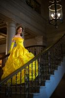 Tale as Old as Time by AdornCosplay