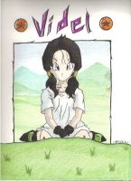 videl color by kamirureKun