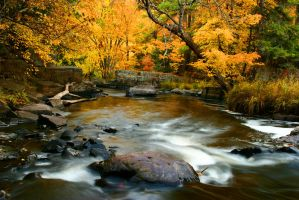 the_rivers_delight by RobertMichael