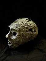 head of jhon 2 by FraterOrion