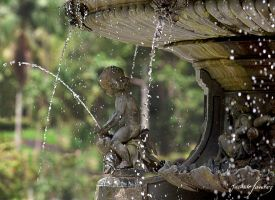 Fountain by ricardsan