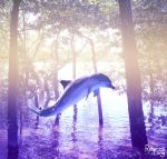 Dolphin by RebeccaLongArt