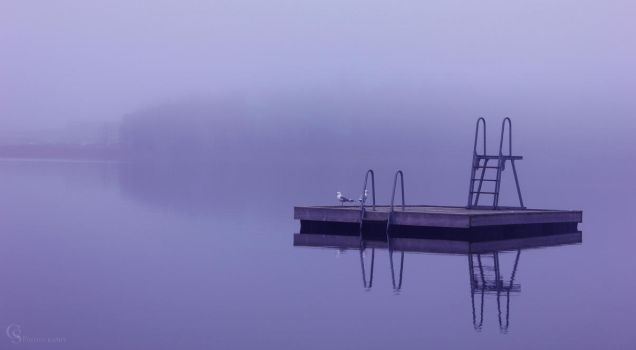 Foggy Morning by CamillaSakar