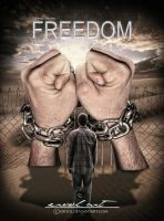 find the freedom by erool