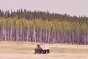 Rustic Barn by Boomboom34