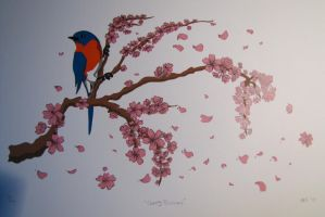 Cherry Blossoms - Print by Saphiroko