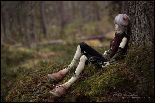Wounded by yenna-photo
