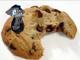 cookie for bluester64 by Nerdy-cookie