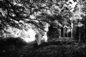 Churchyard Glade - Norfolk, UK by Coigach