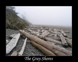 The Gray Shores by environaut