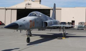 Northrop F-5E Tiger 2 by shelbs2