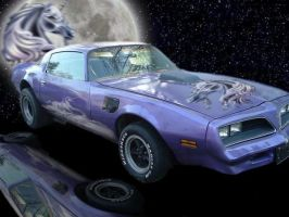 1977 Trans Am Glamourized no 2 by Theo-Kyp-Serenno