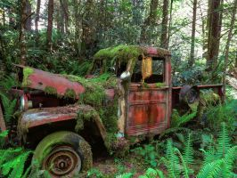 Abandoned Jeep by CMiner1