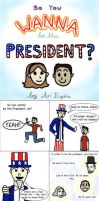 So You Wanna be the President? by ari1nly