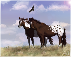 The Mustangs by SeraphimCrystal