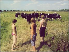we and cows by AnniiFreak