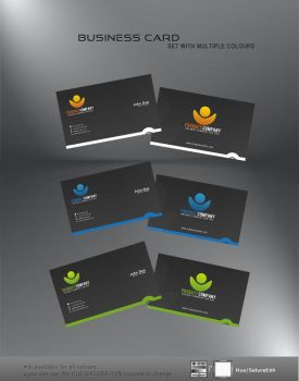 Nice and smooth Business Card by r0naldosla