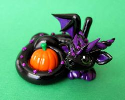 Black dragon with Pumpkin by DragonsAndBeasties