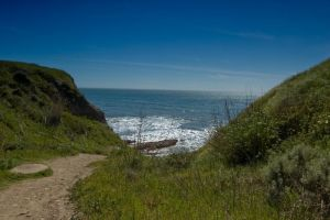 Dirt Path Leading to Ocean by happeningstock