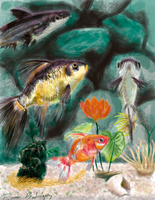 Nature collection - fish in Aquarium by TERRIBLEart