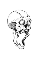 Skull by FecarytheLion