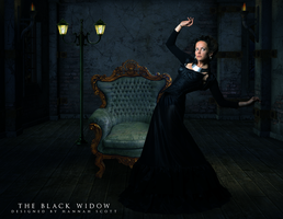 The Black Widow by Magnitude-Designs