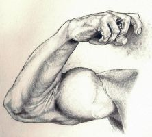 arm study 2 by Storm01535