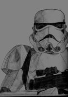 Stormtrooper, Star Wars by dingobuzz269