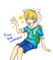 Finn the Human by cloudkourin