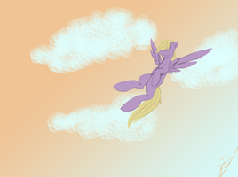 Sunrise Fly by splashsillyone