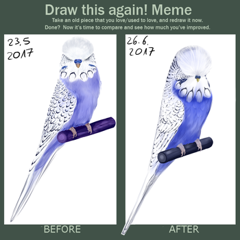 Draw this again Birb by o0WhiteRaven0o