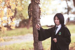 Severus Snape ~ Show me your magic by OriyaPrince