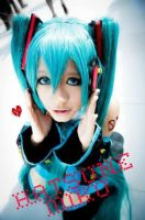 HatsuneMiku- Wondering by 17th-Jokers