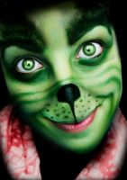 Merry Xmas (Grinch Makeup) by Chuchy5