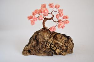 Sakura Bonsai Tree by NoriAnum