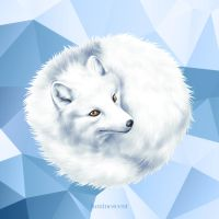 Arctic Fox by vervex