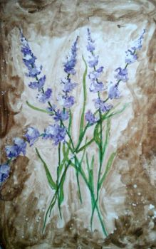 Watercolor Lavender by EleftheriaLiberation