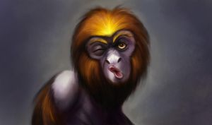 Self Portrait as Tamarin by angryzenmaster