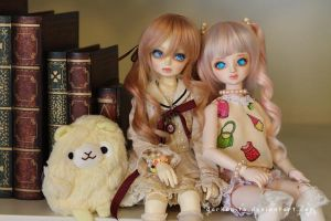 Dollmeet Fat Dragon: Friends forever by darknaito