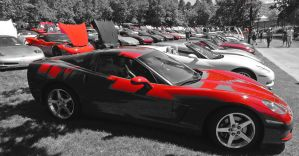 Red Vettes by tundra-timmy