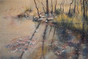 Still Waters -  mixed media by AstridBruning
