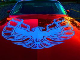 Firebird by Nashmetro