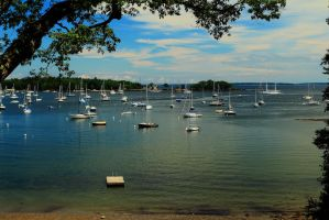 Camden Harbor Summer by Celem