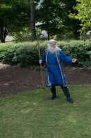 2014-08-31 Wizard in Park 11 by skydancer-stock
